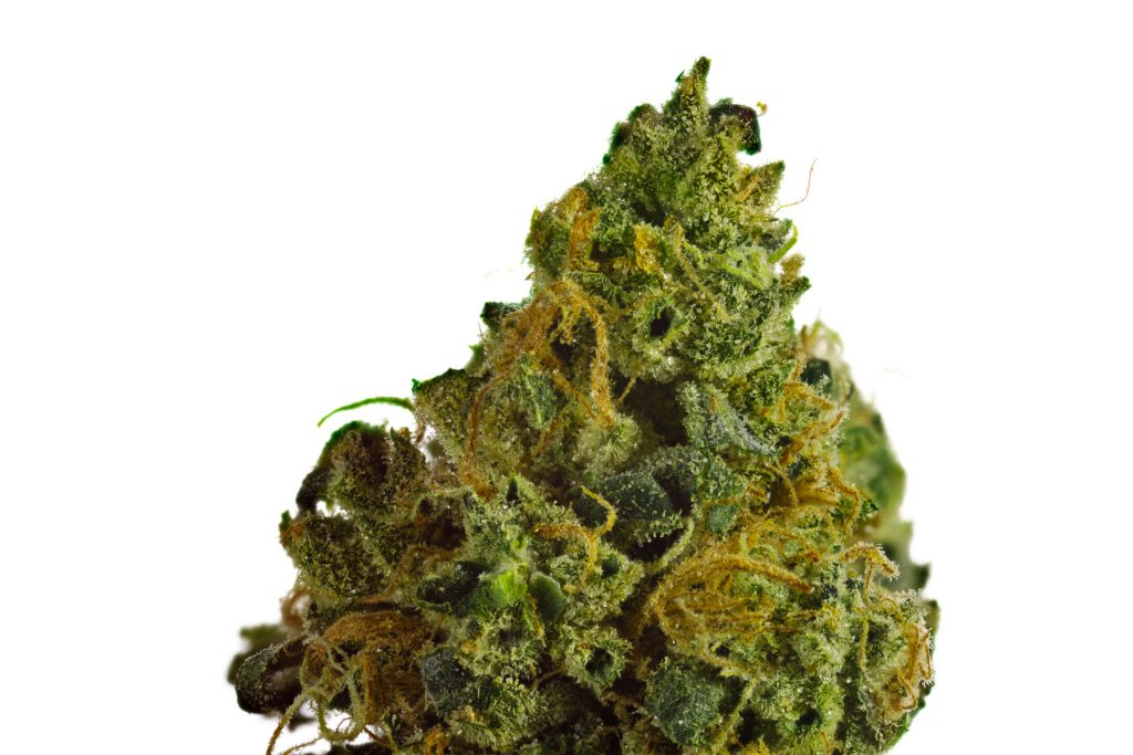Skywalker Weed Strain, weed for sale, exotic weed strain